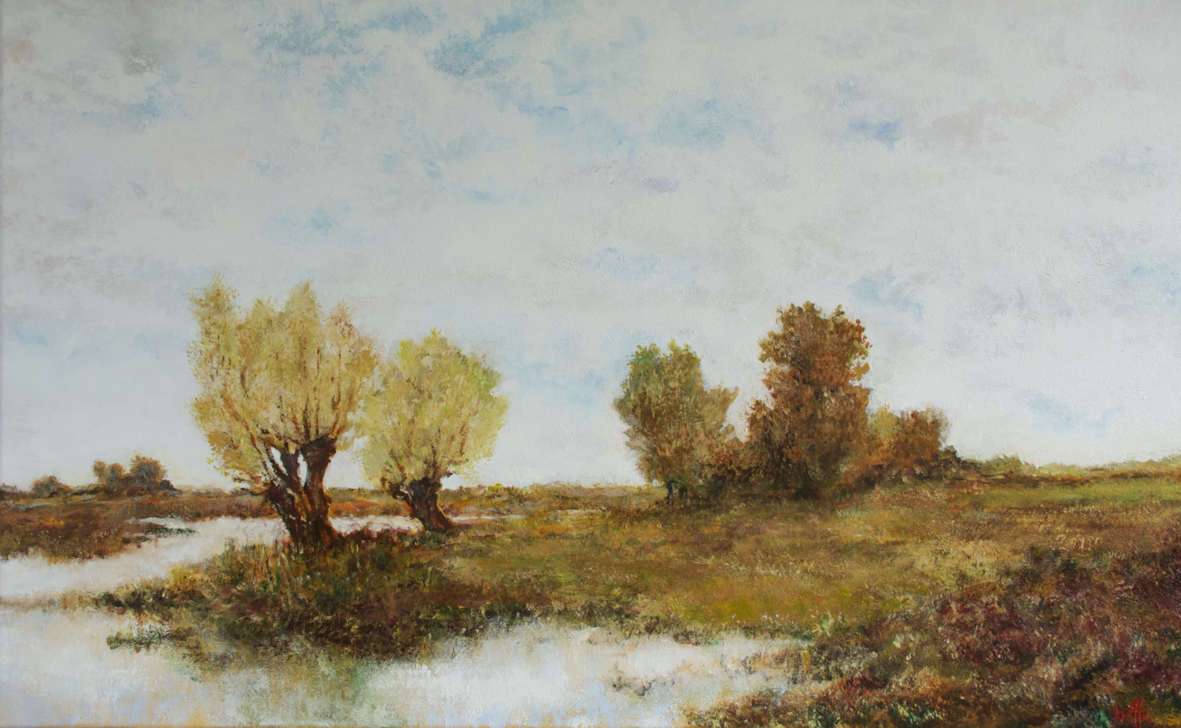 353 - Polderland met bomen