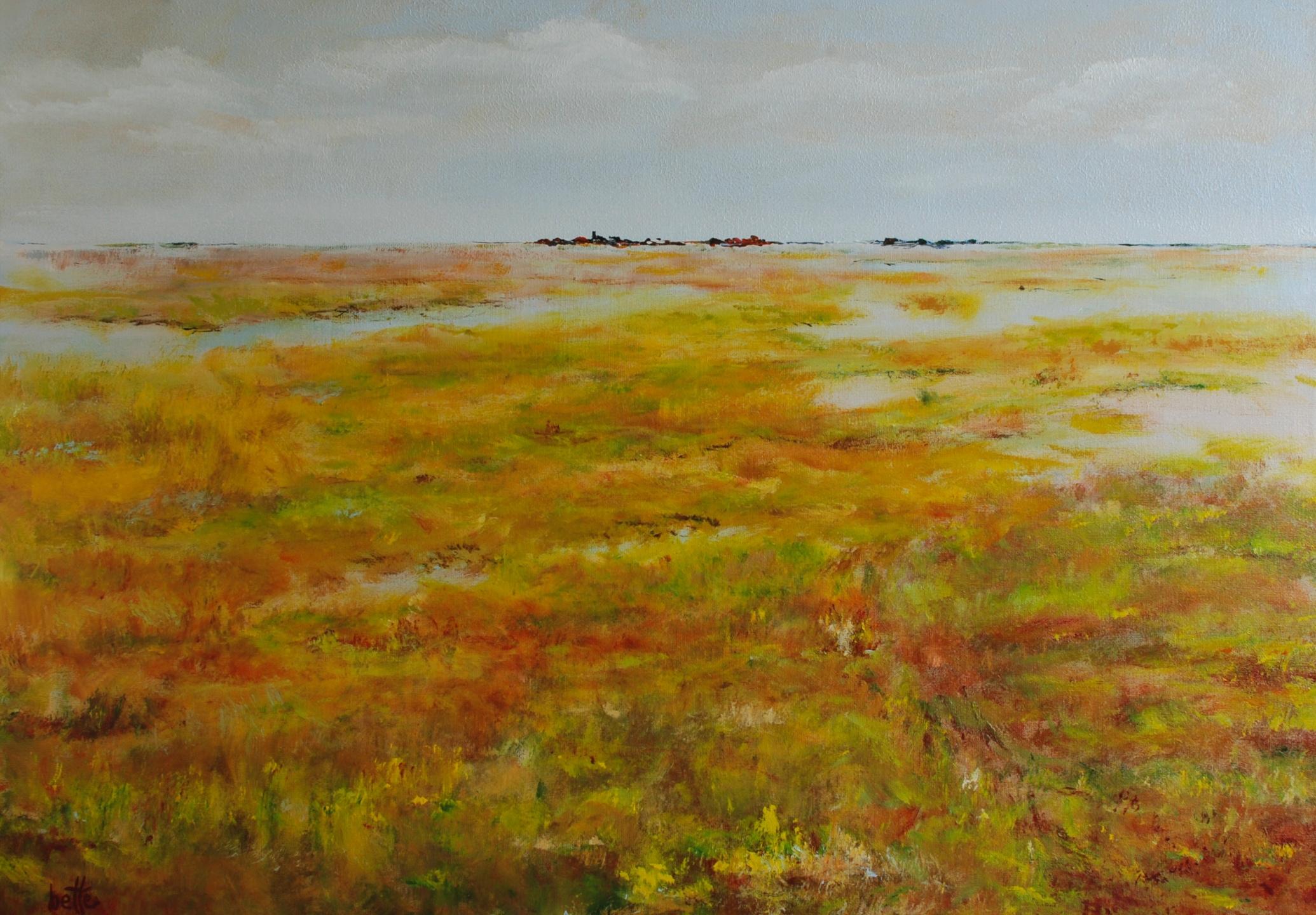 269 - Wetland