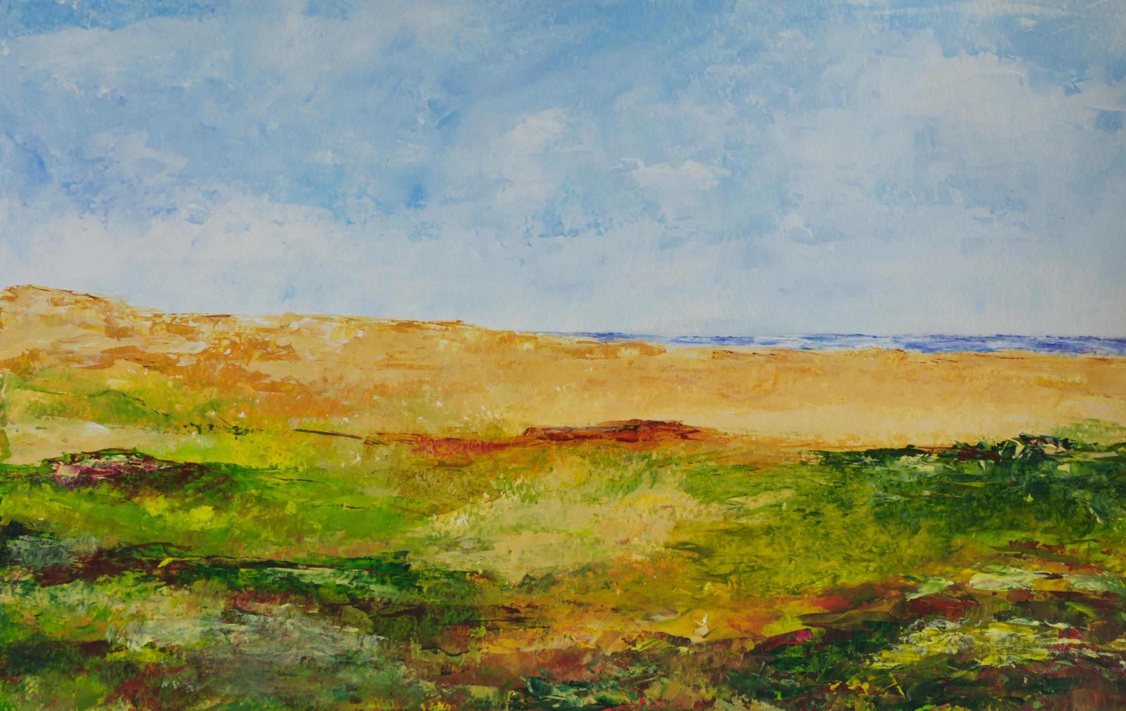 320 - Duinlandschap in de zomer
