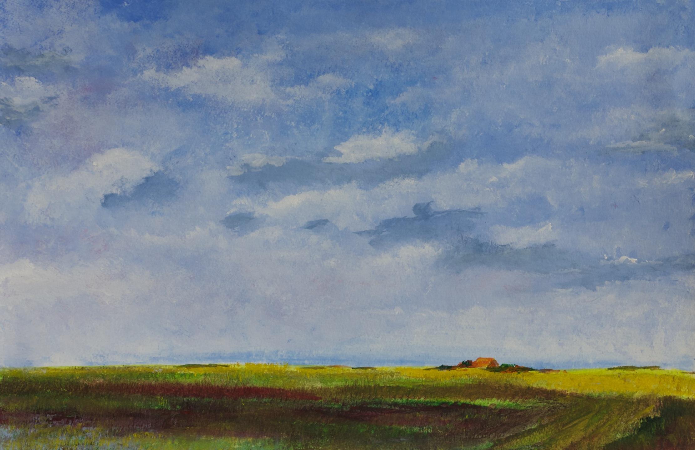 321 - Polderlandschap met hoge lucht